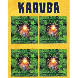 Karuba: Mini Expansión Vulkan